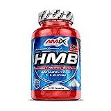 AMIX - Complemento Alimenticio - HMB - 120 Cápsulas - Calidad Farmacéutica - Incrementa...